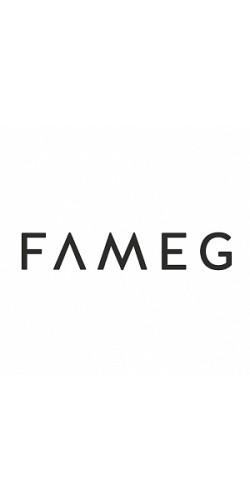FAMEG (Польша)